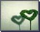 공자! 사랑을 말하다