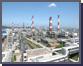 2010 전통주력산업 전망