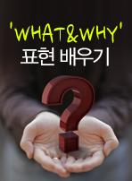'WHAT&WHY' 표현 배우기