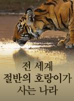 전 세계 절반의 호랑이가 사는 나라