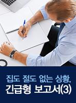 집도 절도 없는 상황, 긴급형 보고서(3)