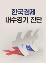 한국경제 내수경기 진단