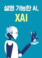 설명 가능한 AI, XAI