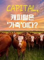 CAPITAL, 캐피털은 '가축'이다?