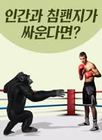 인간과 침팬지가 싸운다면?
